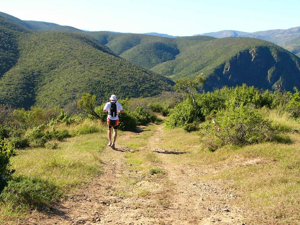 addo elephant trail run