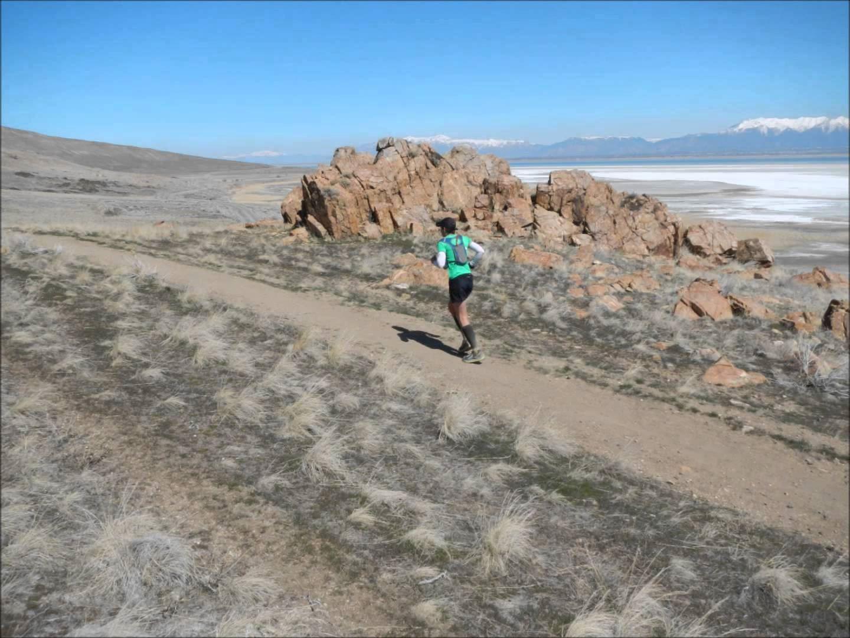 antelope island buffalo run 100 miler