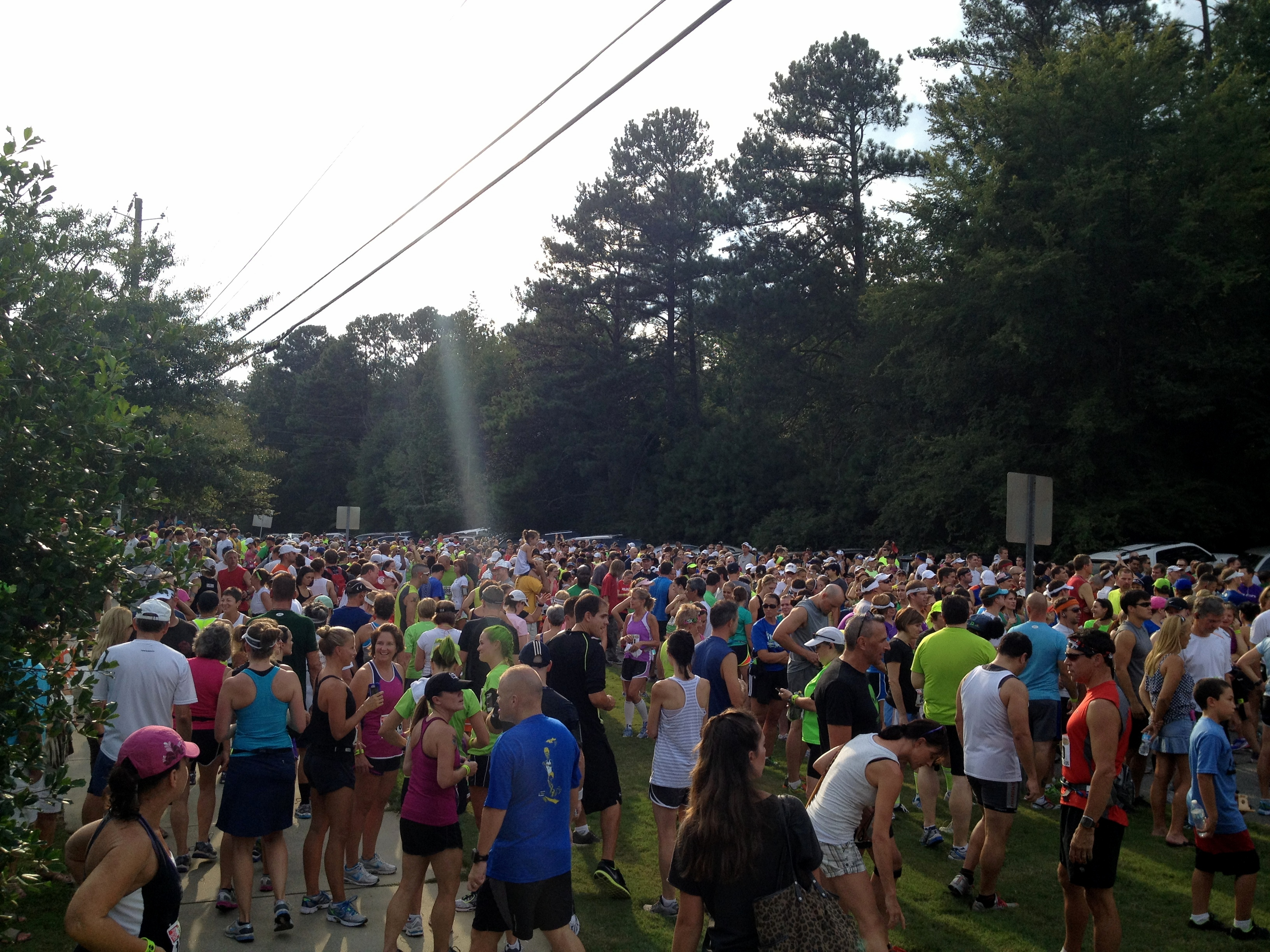 area 13 1 half marathon