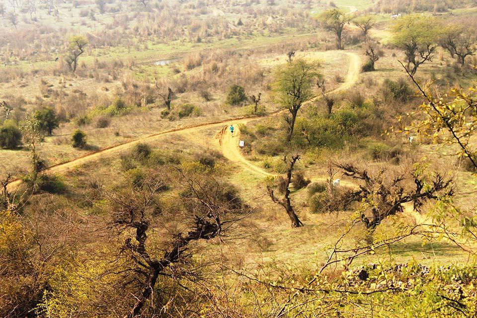 Alles over de Atb Trail A Thon en hoe jij er aan mee kunt doen