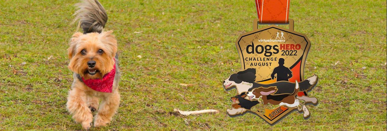 august dogs hero challenge