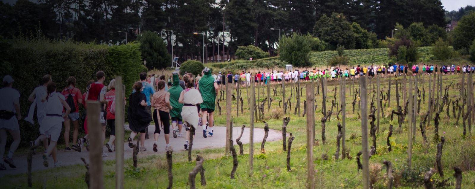 Alles over de Bacchus Marathon en hoe jij er aan mee kunt doen