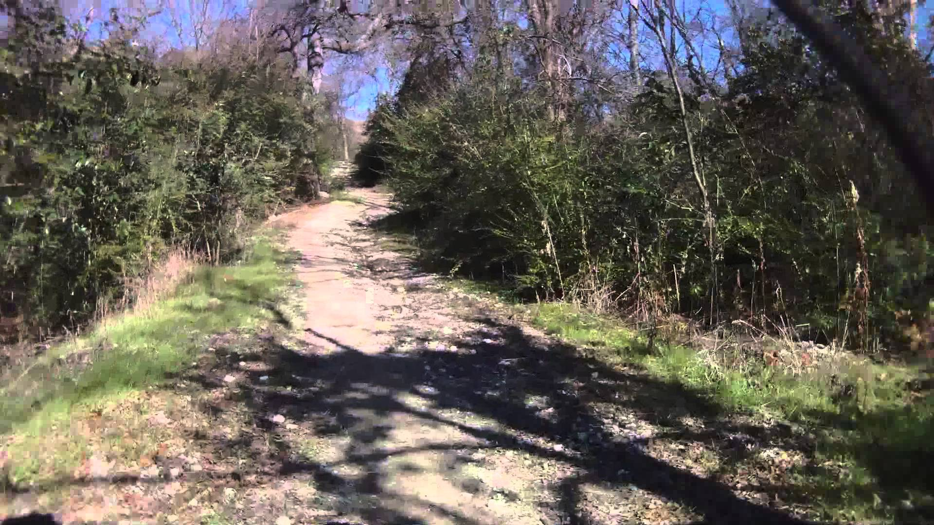 big cedar endurance run 50k