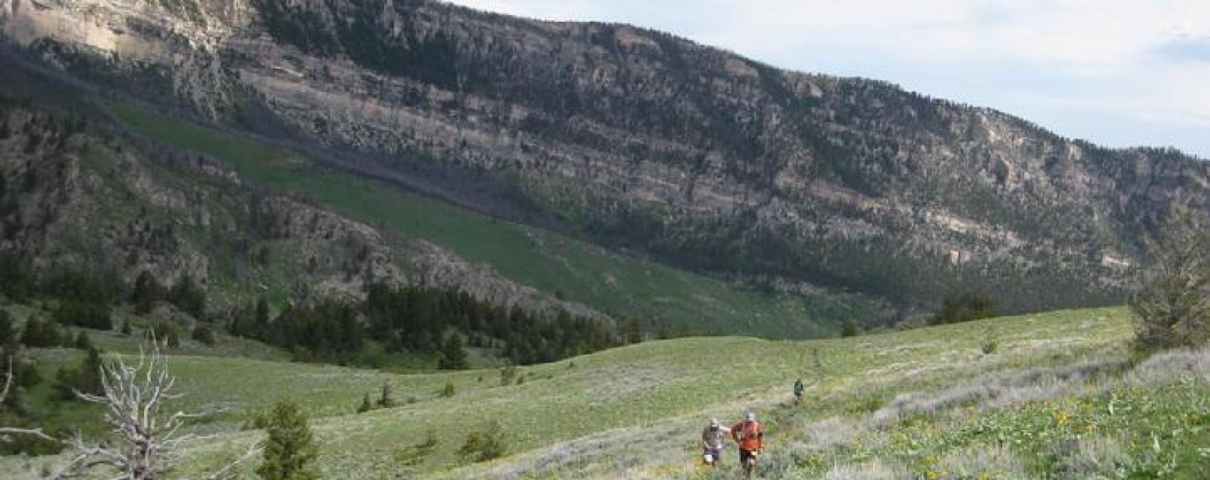 bighorn trail runs
