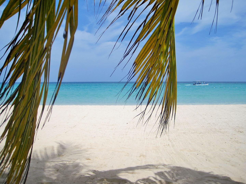 caribbean virtual run jamaica