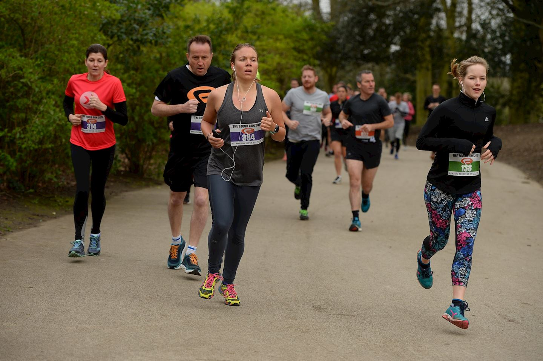 conquer crystal palace autumn 5k 10k 15k and half marathon