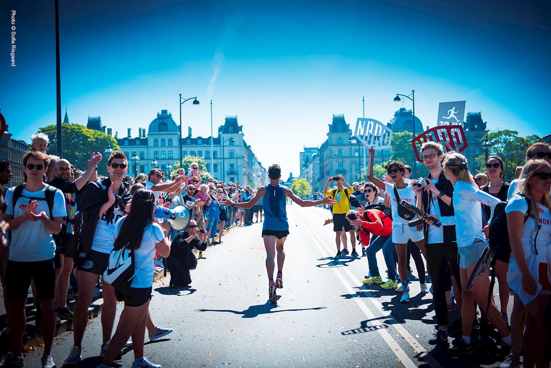 Alles over de Telenor Copenhagen Marathon en hoe jij er aan mee kunt doen