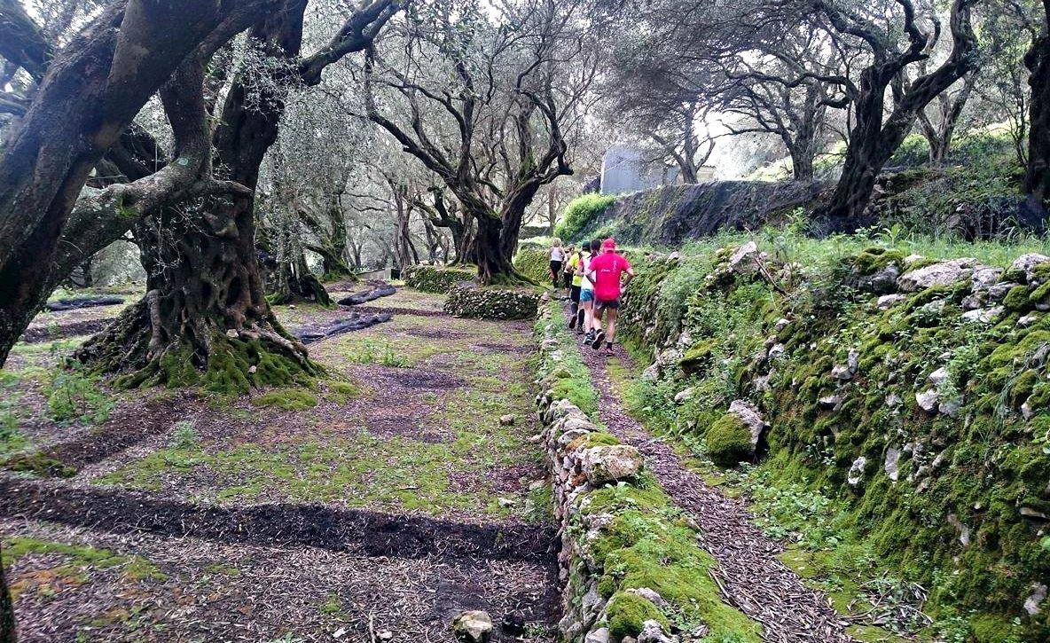 corfu mountain trail