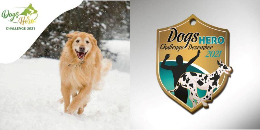 december dogs hero challenge