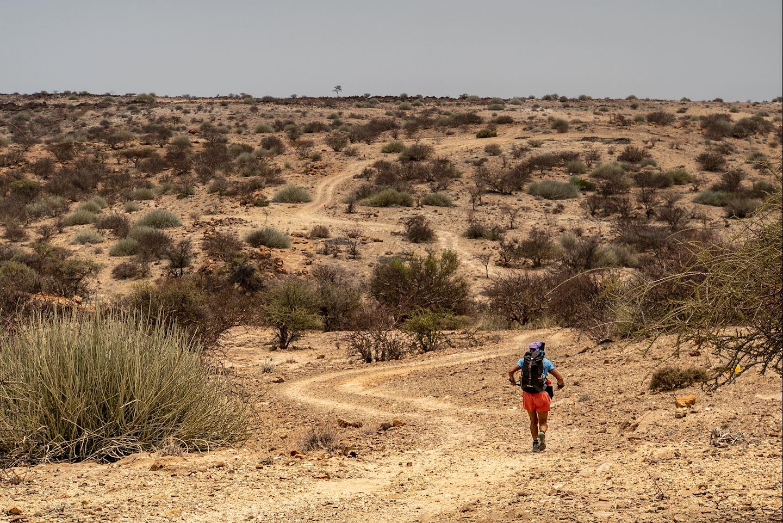 desert ultra