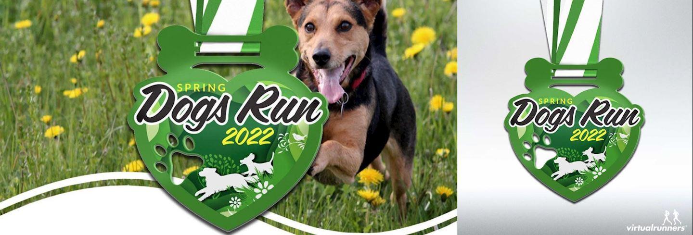 dogs spring virtual run