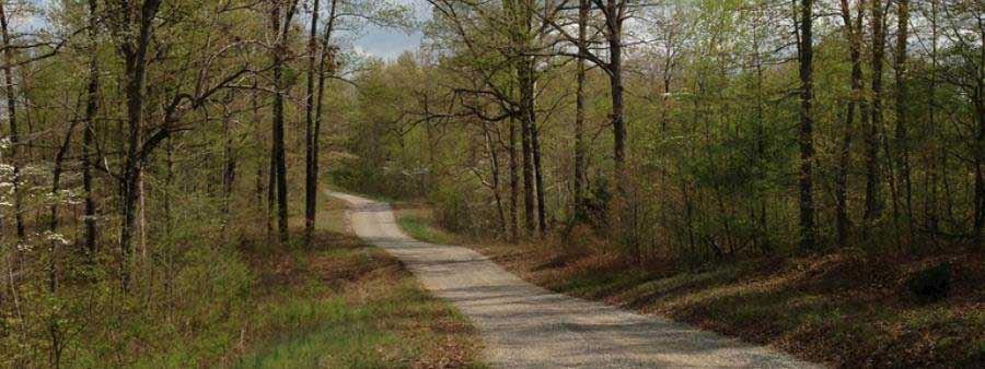 dry creek trail races
