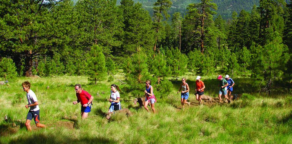 Alles over de Flagstaff Half Marathon en hoe jij er aan mee kunt doen