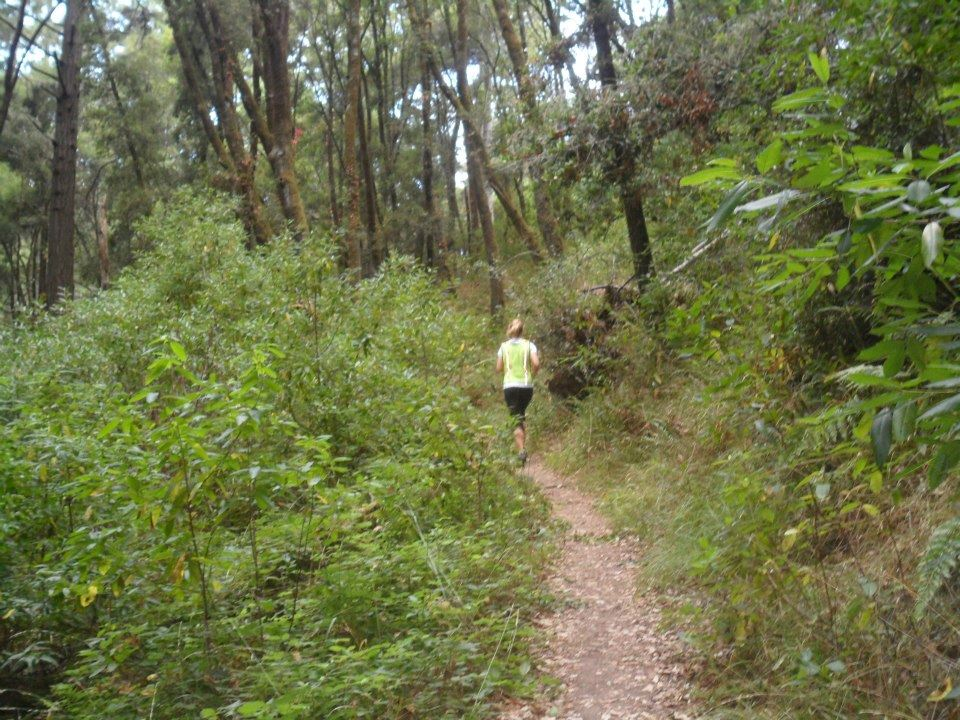 forest of nisene marks marathon