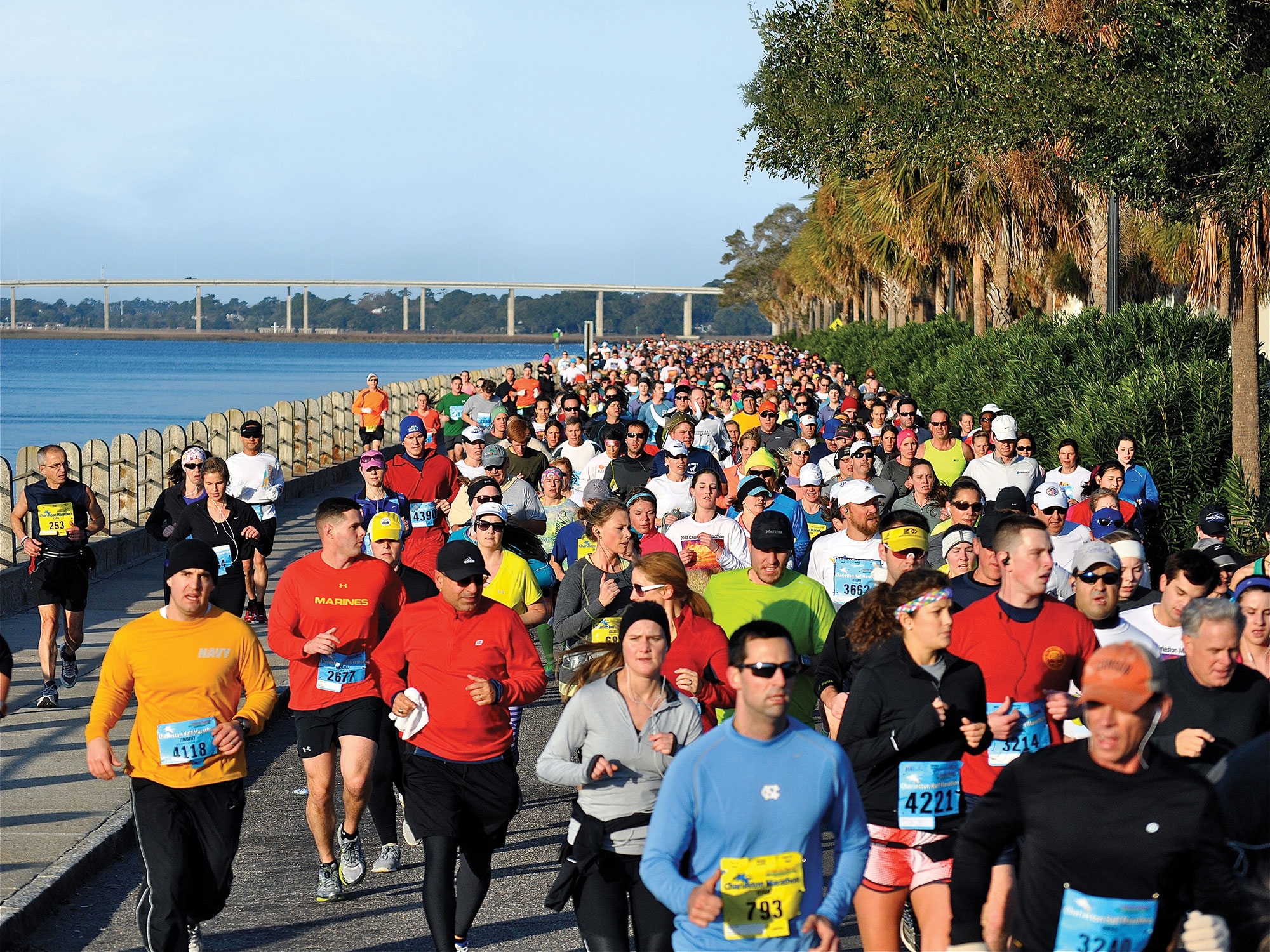 harris teeter charleston marathon
