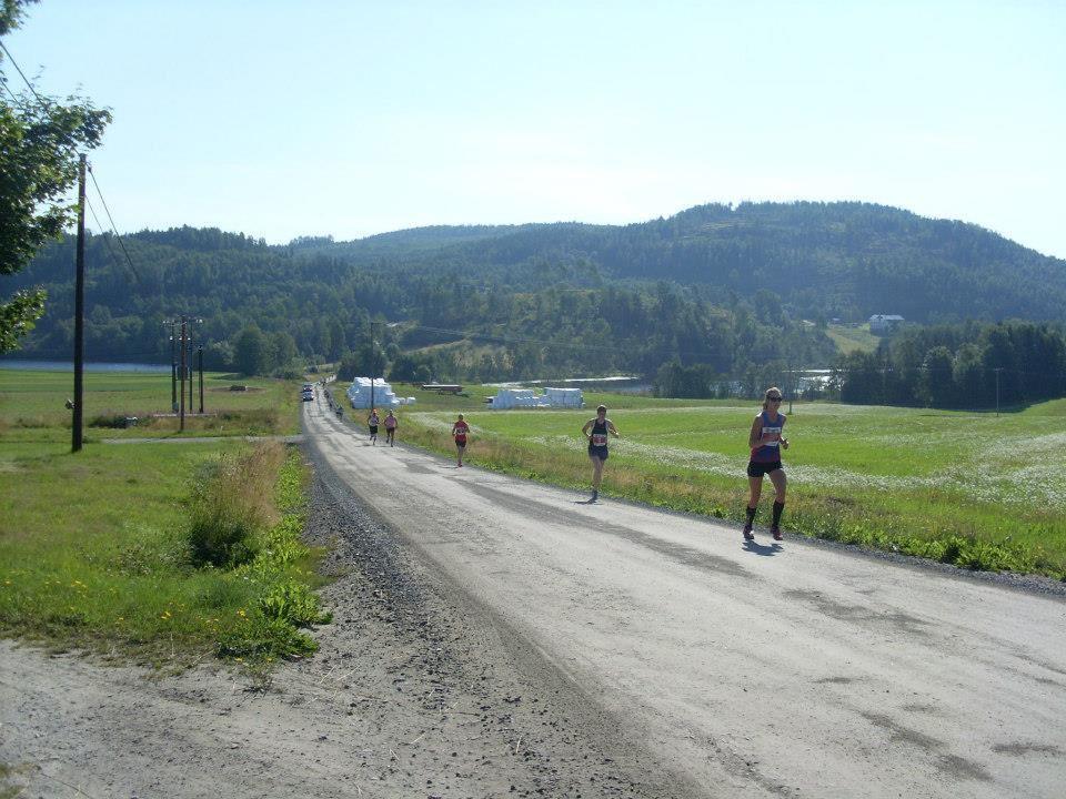 Alles over de Hoga Kusten High Coast Marathon en hoe jij er aan mee kunt doen