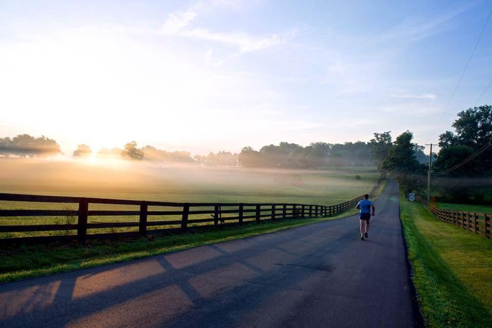 Alles over de Horse Capital Marathon en hoe jij er aan mee kunt doen