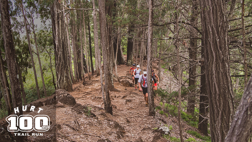hurt 100 mile trail run