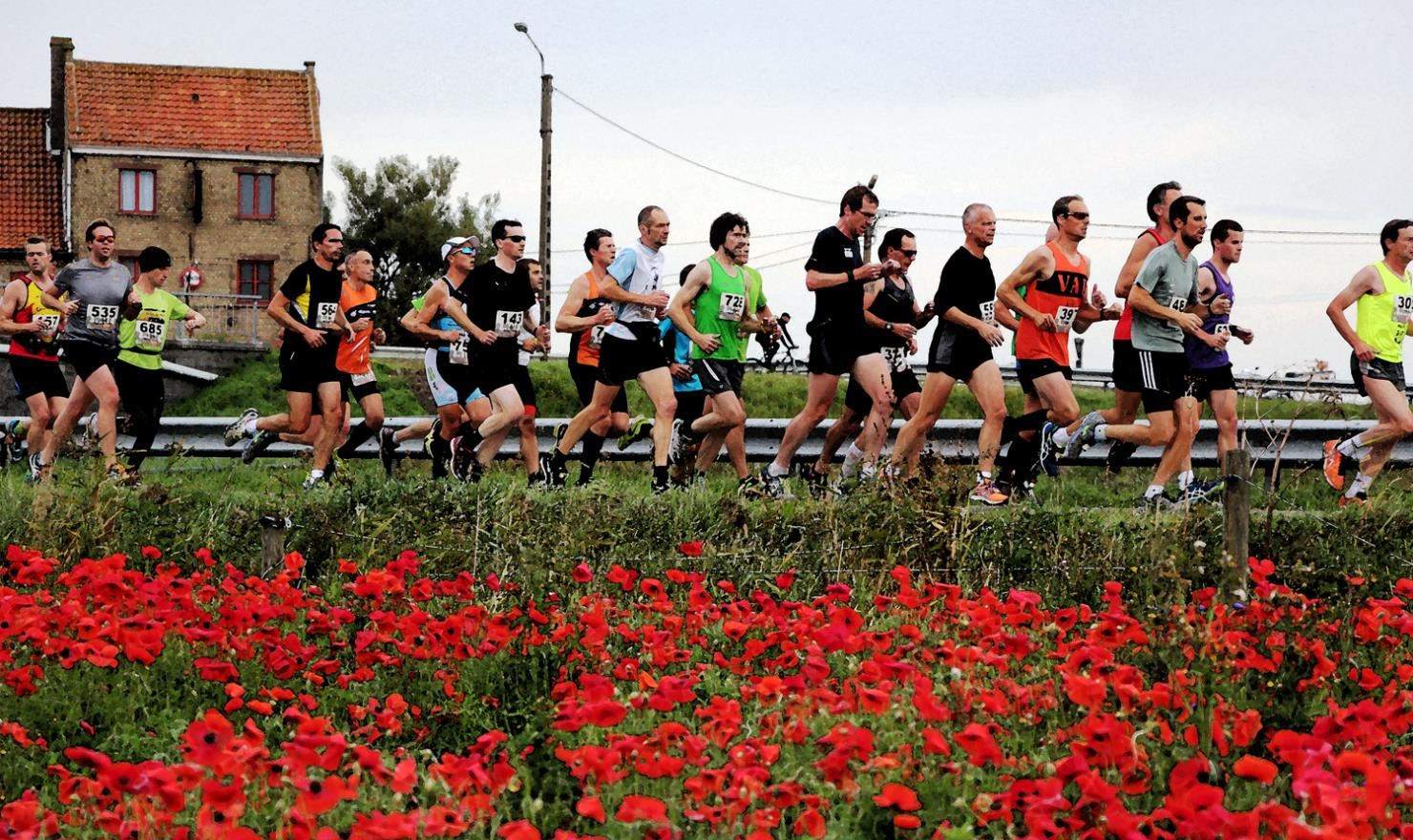 in flanders fields marathon