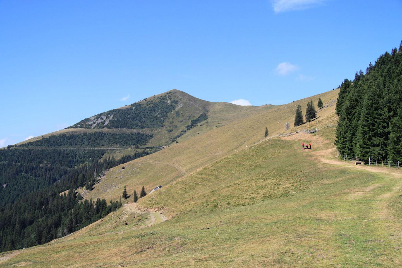 kainach bergmarathon