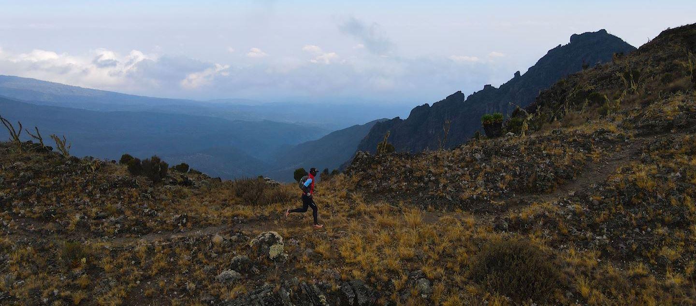 kilimanjaro trail run