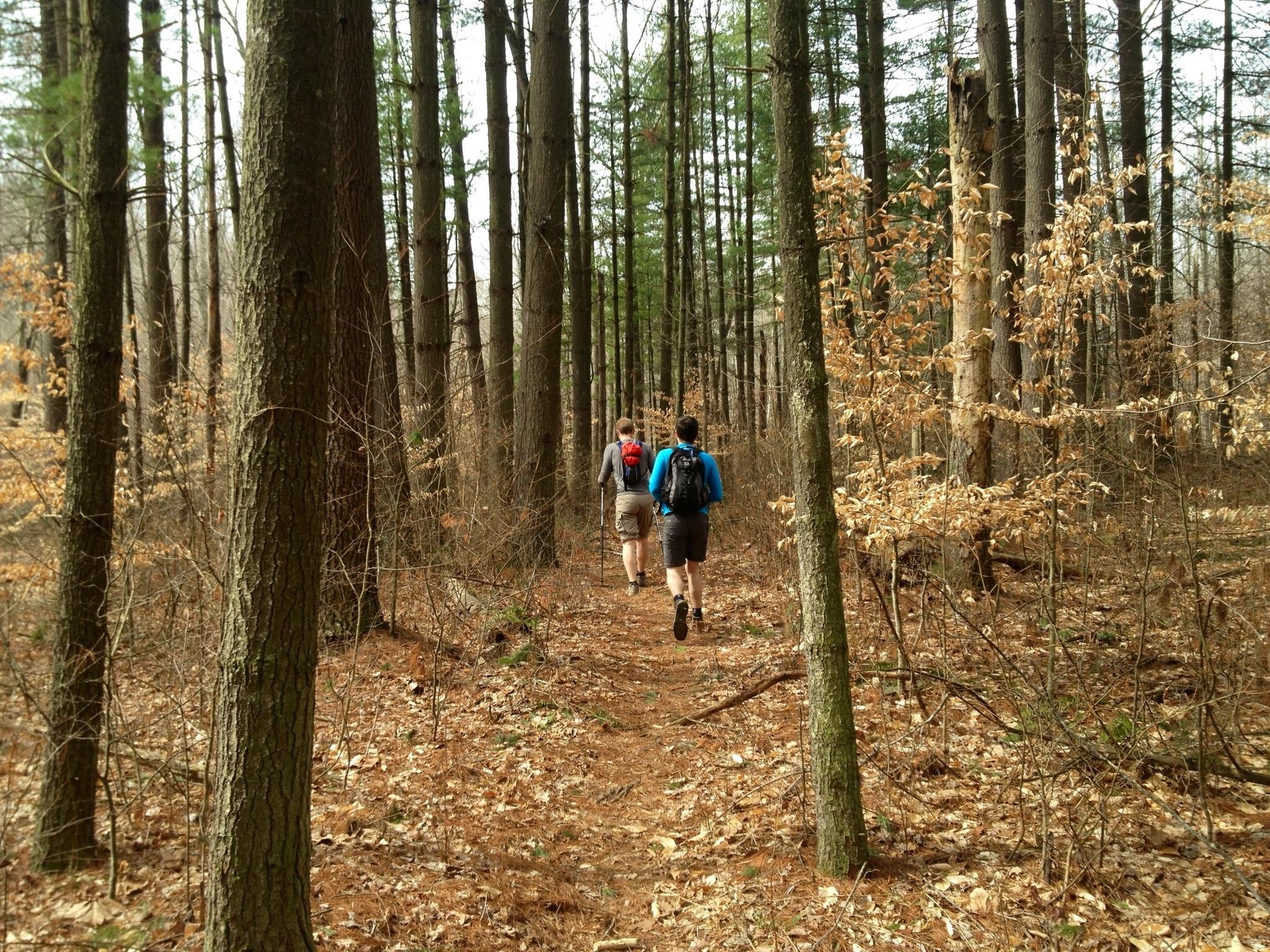 knobstone trail mini marathon