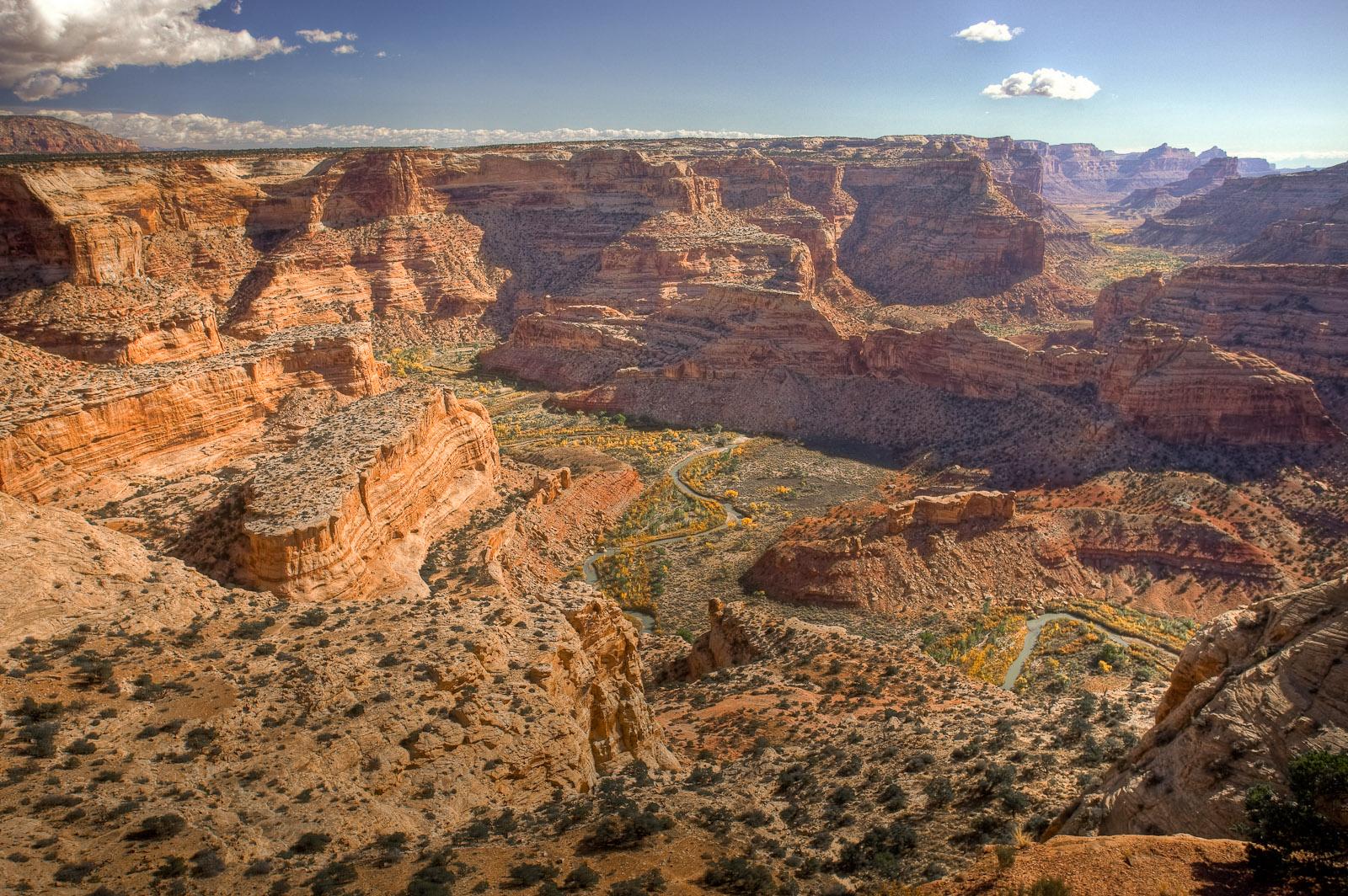 Alles over de Little Grand Canyon Marathon en hoe jij er aan mee kunt doen