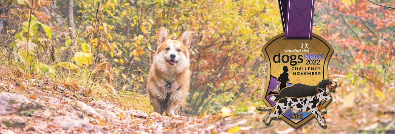 november dogs hero challenge
