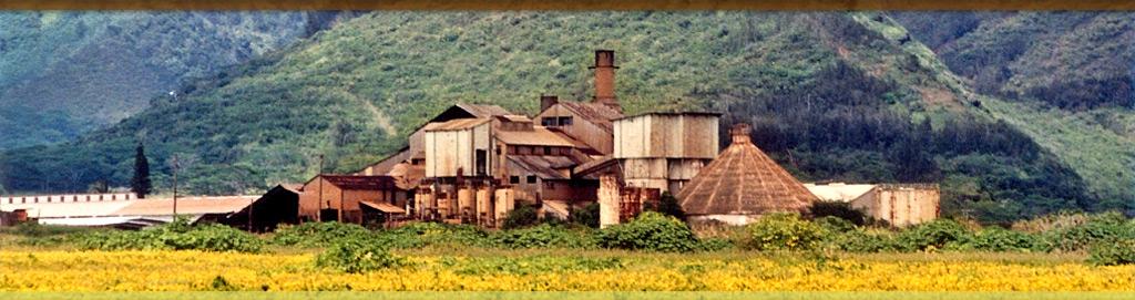 old koloa sugar mill run