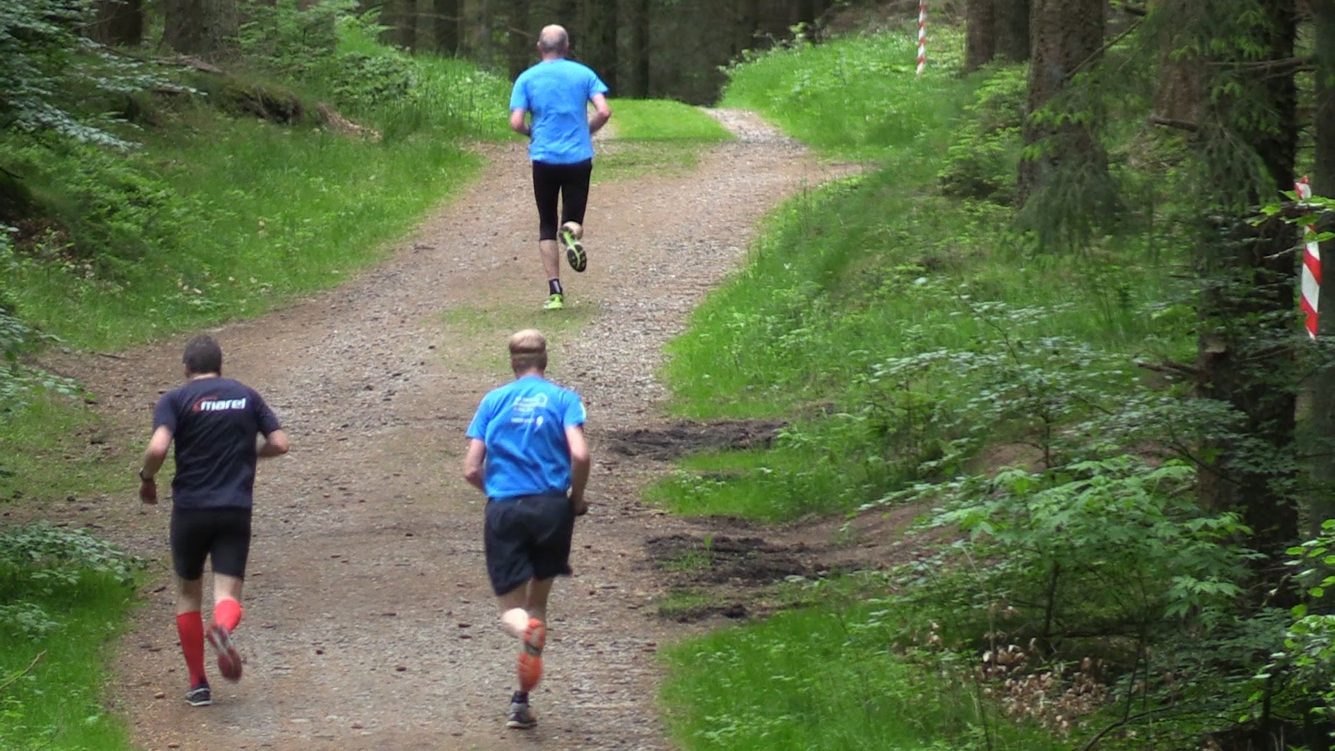 rebildl bet half marathon