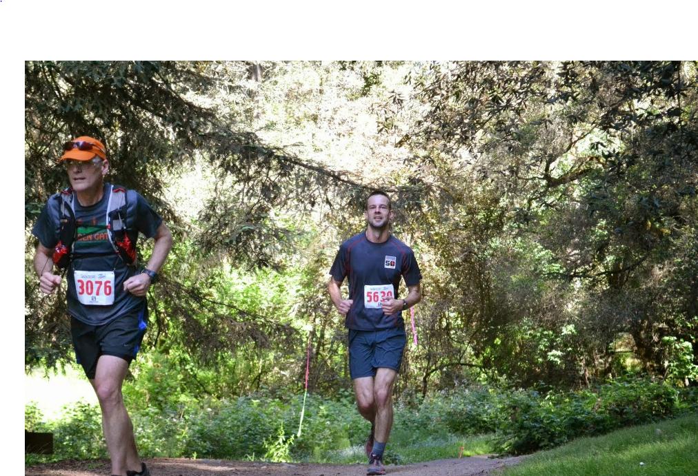 redwood trail run