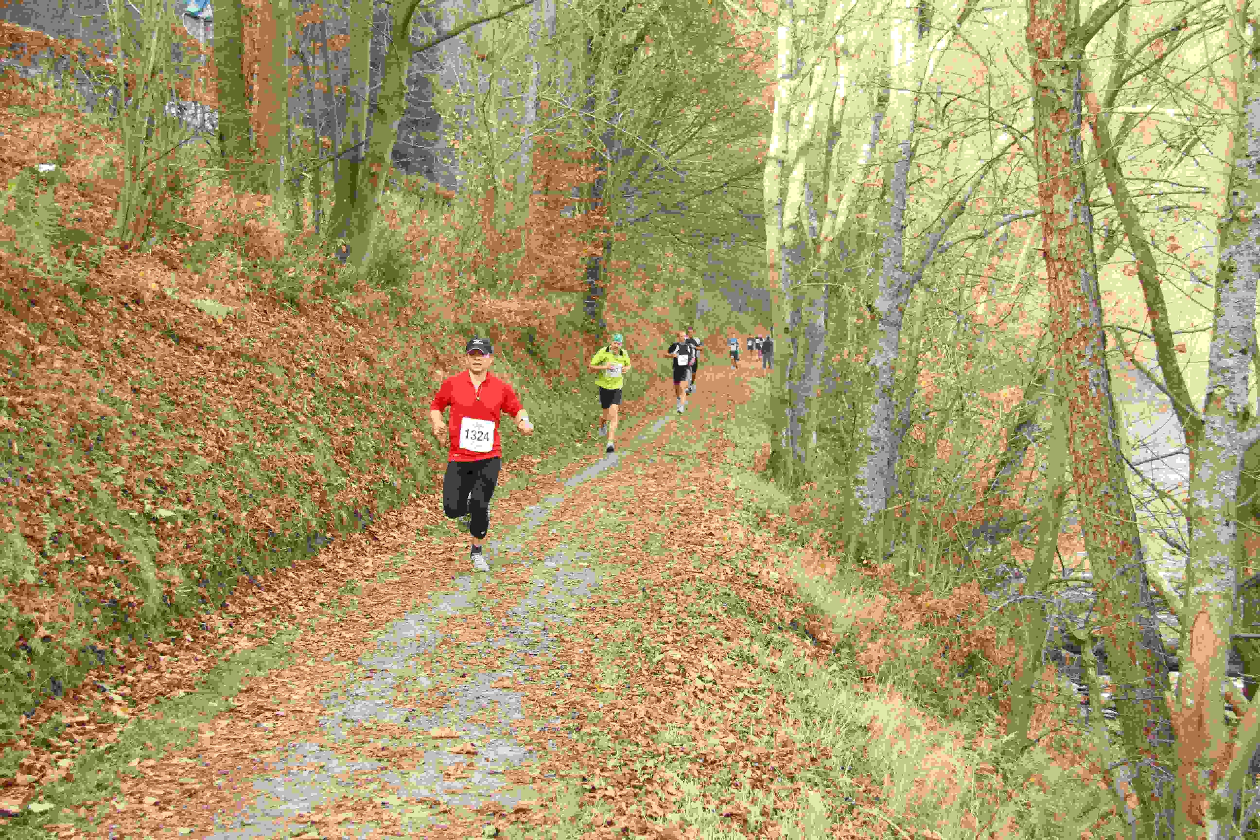 Alles over de Rursee Marathon en hoe jij er aan mee kunt doen