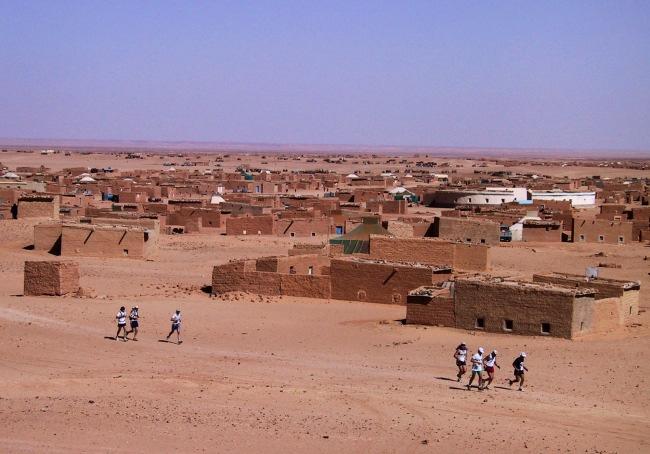 sahara marathon 1
