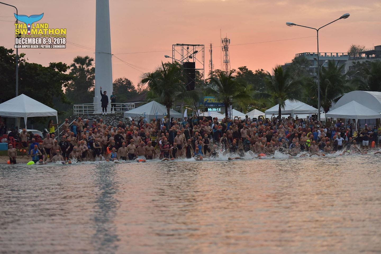 thailand swimathon
