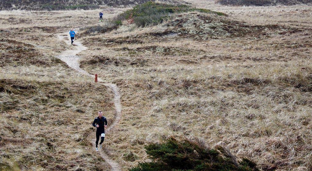 Alles over de Thy Trail Marathon en hoe jij er aan mee kunt doen