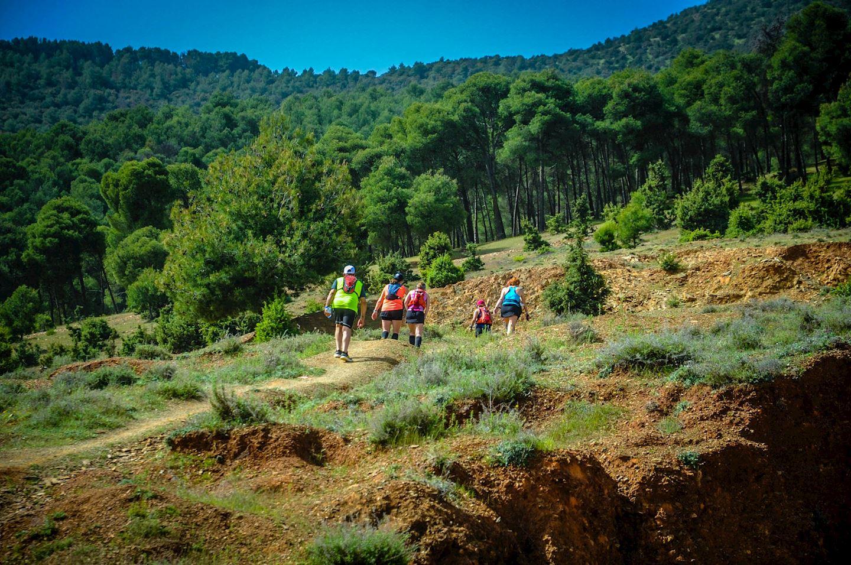 trail amizmiz