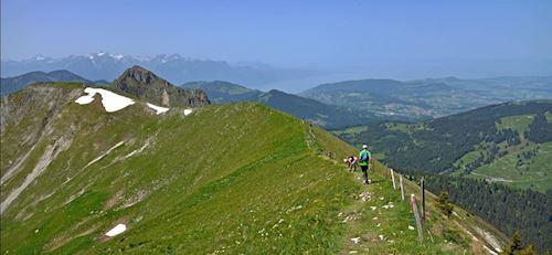 Trail des Paccots