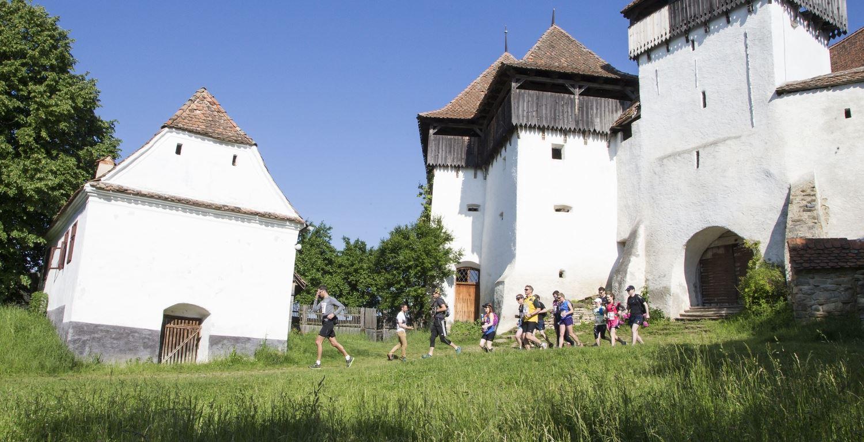 transylvanian bear race