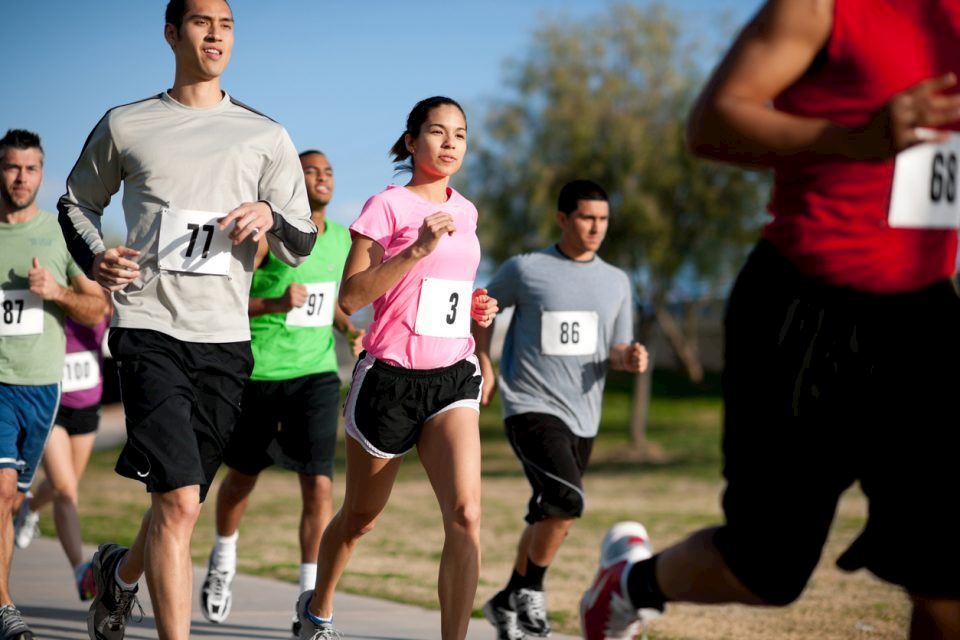 Alles over de Turtle Marathon en hoe jij er aan mee kunt doen