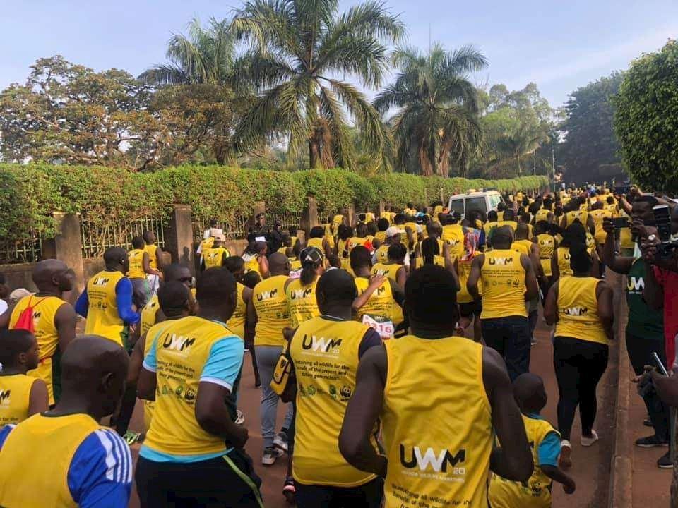 uganda wildlife marathon